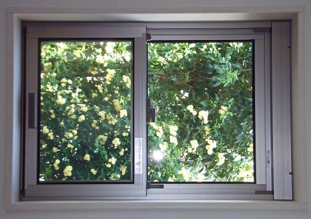 窓の前に木々